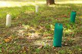 Firedog Lining dummy marking 500 g bielo/zelený s držátkom