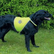 Trixie Reflexná vesta pre psa L 48  -62 cm/64 - 81 cm
