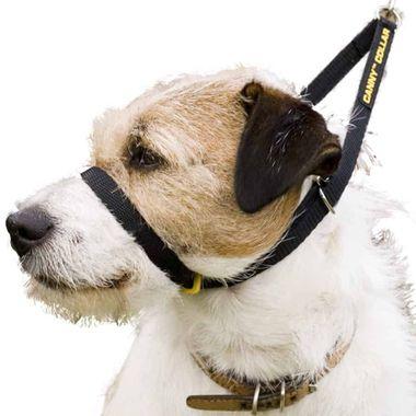 Canny Collar výcvikový obojok, čierny, veľkosť 1 (23 - 28 cm)