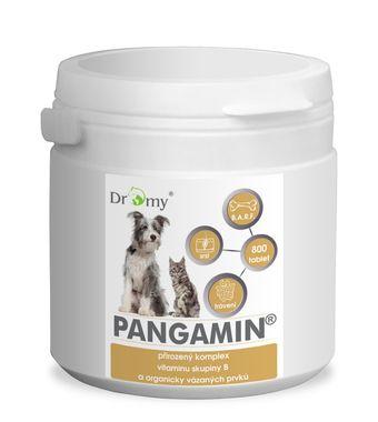 Dromy Pangamin® MINI 1000 tbl.