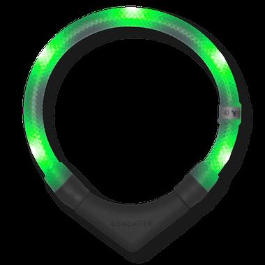 LEUCHTIE Plus LED svietiaci obojok zelený transparentný 47,5 cm