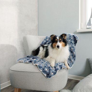 Trixie Plyšová deka TAMMY 100 x 70 cm modrá/béžová